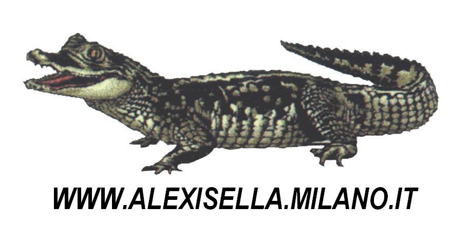 Pelletteria Alex Isella